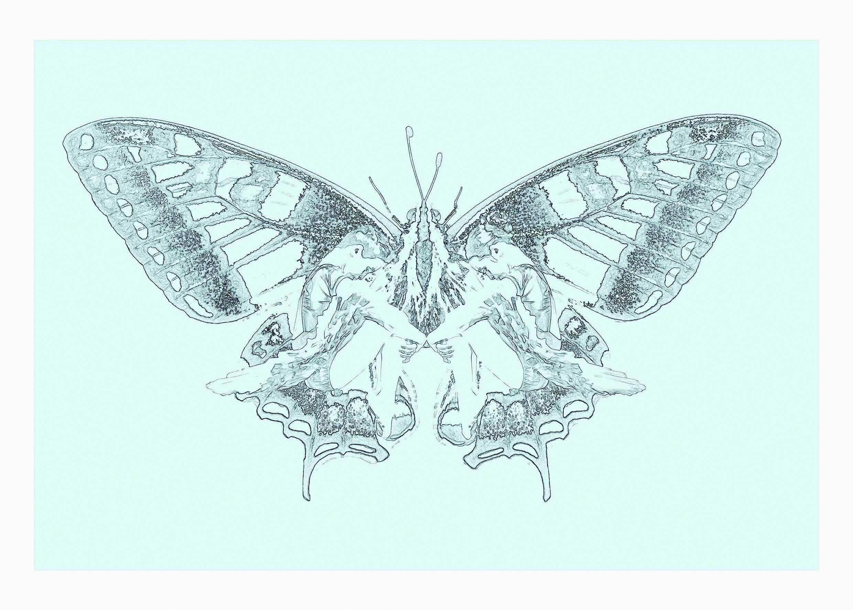 Metamorphosis 50 x 70 (trykk) | 1900,-